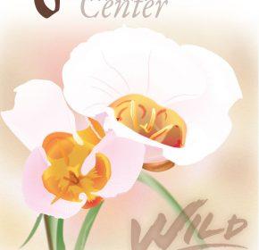 Stokes Nature Center Gala Poster