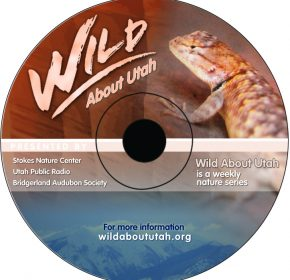 Wild About Utah Cd Cover